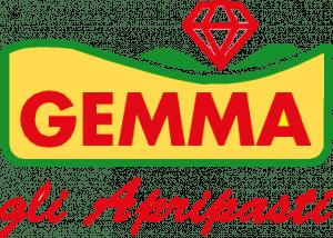 gastronomia-gemma-pianezza-antipasti-logo